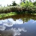 モウセン池