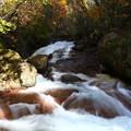 横谷渓谷の渓流