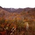 鎌池への紅葉