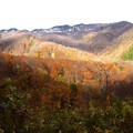 山の紅葉風景