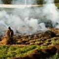 畑の焚火2