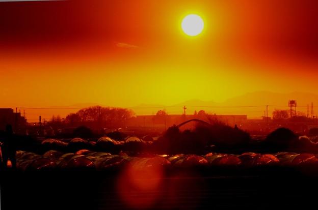 夕方の光線