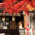 Photos: 茶屋守