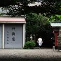 アキバ神社