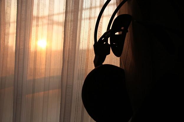 写真: 朝日が目にしみる