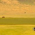 草原の中へ