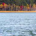 湖畔の紅葉その2