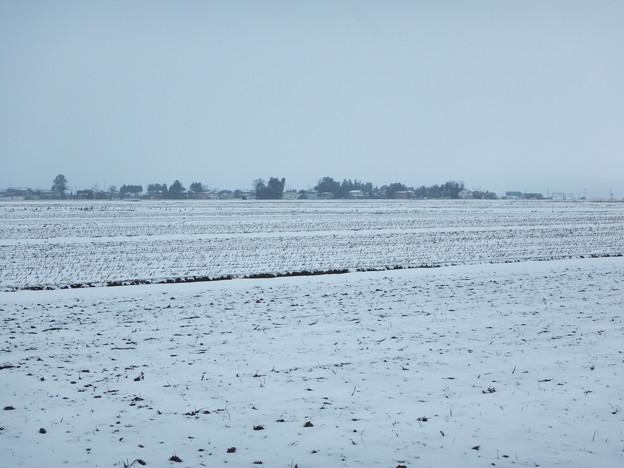 収穫後の冬