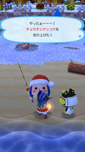 チョウチンアンコウ釣れた?