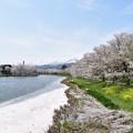 写真: 山雪と桜雪