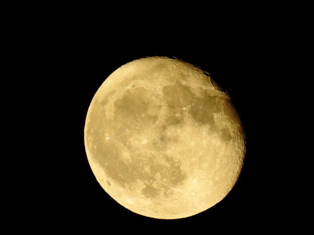 写真: 9月8日の月