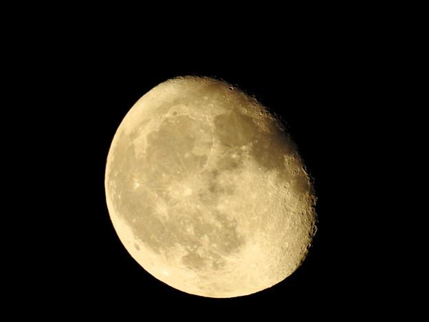 写真: 9月9日の月