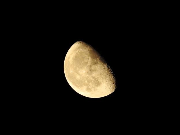 月(10月10日)
