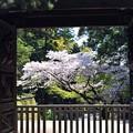 21 円覚寺