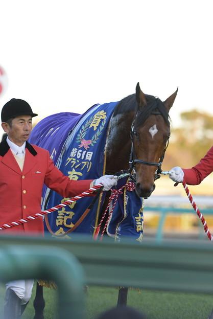 第61回有馬記念馬 サトノダイヤモンド号