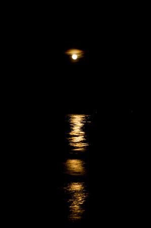 本日は満月