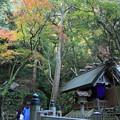 Photos: 多度大社 IMG_0695_2