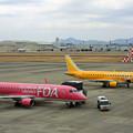 Photos: 県営名古屋空港にて FDAが2機 IMG_0974_2
