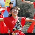 Photos: おどる春2017 西浜01