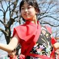 Photos: おどる春2017 西浜08