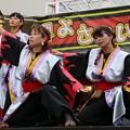 Photos: かえる2017 酒天童子-14