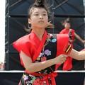 Photos: おどるんや2017 西浜04
