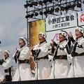 Photos: おの恋2017 恋09