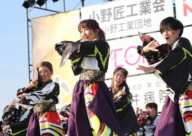 Photos: おの恋2017 下駄っぱーず16