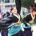 Photos: ど祭2017 飃10
