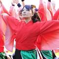 Photos: 神戸2017 おどりっつ09
