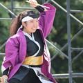 Photos: こいや2017 百笑03