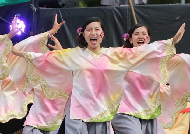 写真: こいや2017 仏喜踊20