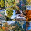 写真: 秋景(紅葉)collage