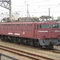 EF81-406