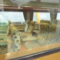 A列車で行こう キハ185-1102  2