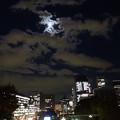 Photos: 東京国立近代美術館より (千代田区北の丸公園)