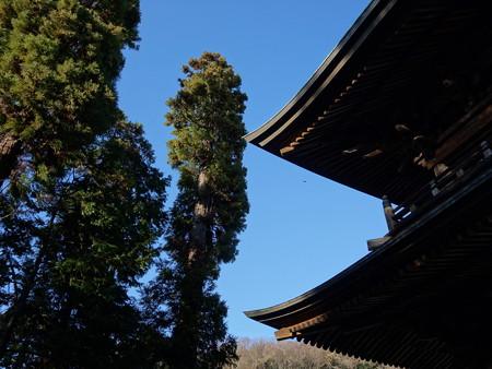 円覚寺 (神奈川県鎌倉市山ノ内)