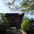 常照寺 (横浜市南区南太田)