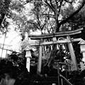 多摩川浅間神社 (大田区田園調布)