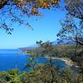 写真: オシンコシン岬(旧知床八景)からの景観より