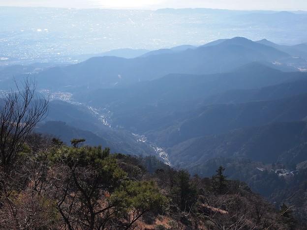 大山神社から伊勢原市街 (2)