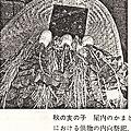Photos: 図06-2