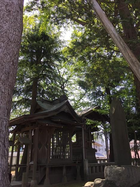 4月_葛西神社 5
