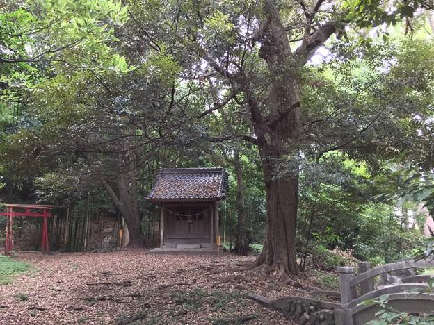 8月_熊野神社 1