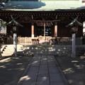Photos: 12月_松原神社 3
