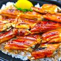 Photos: 鮮魚さかい ランチ あなご丼 弁当 呉市本通6丁目