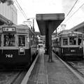 広島電鉄 650形 750形 広島市南区松原町 広島駅電停 2016年11月29日