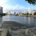 Photos: 台屋の出鼻 広島市南区京橋町 京橋川 猿猴川分岐 2016年8月24日