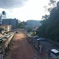 広島東照宮 参道 広島市東区二葉の里2丁目 石鳥居の向こうはシリブカ公園 被爆樹木クスノキ 2016年9月23日
