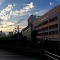 Photos: EKICITY エキシティ2階デッキウォークから広島駅方向 2017年9月9日